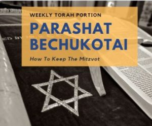 Parashat Bechukotai – How To Keep The Mitzvot