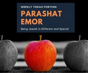 Parashat Emor – Why Can't I Be Like My Friends?