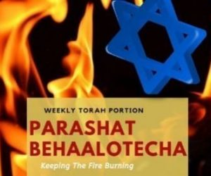 Parashat Behaalotecha- Keeping The Fire