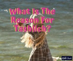Tashlich All Your Questions Answered
