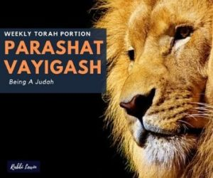 Parashat Vayigash Being A Judah
