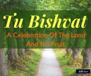 Tu Bishvat – A Celebration Of The Land And It's Fruit.