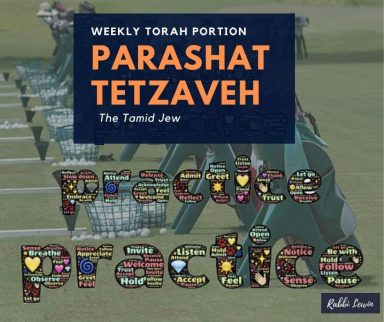 Parashat Tetzaveh-The Tamid Jew