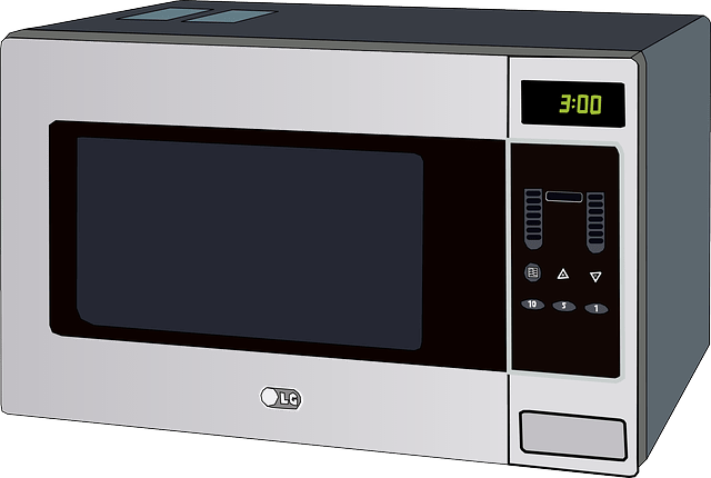 kashering the microwave