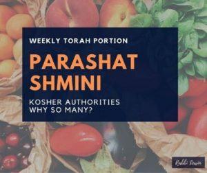 Parashat Shmini