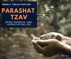 Parashat Tzav Being Thankful and Appreciating Life