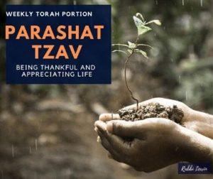 Parashat Tzav