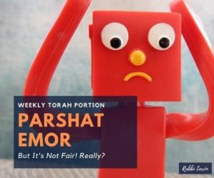 Parshat Emor-But It's Not Fair! Really?