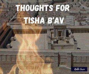 What Do I Think About On Tisha Bav?
